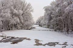 A neve cobriu o campo Imagem de Stock