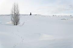A neve cobriu o cemitério Foto de Stock Royalty Free