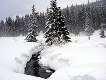 A neve cobriu a paisagem Fotos de Stock
