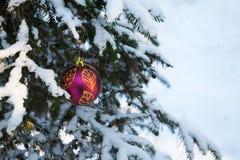 A neve cobriu spruce com a decoração do Natal Fotografia de Stock Royalty Free