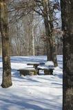 A neve cobriu a tabela de piquenique Imagem de Stock
