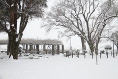 A neve cobriu a terra Foto de Stock Royalty Free