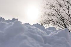 Neve com luz solar obscura atrás Imagens de Stock Royalty Free