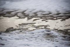 Neve com testes padrões da sombra da árvore imagens de stock royalty free