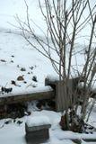 Neve como um accesory à natureza Foto de Stock