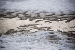 Neve con i modelli dell'ombra dell'albero immagini stock libere da diritti