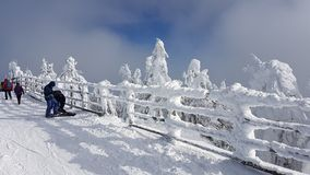 Neve congelada no esqui em Charpatians Montains foto de stock royalty free