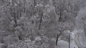 A neve da cidade caiu vídeos de arquivo