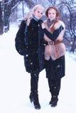 Neve da lésbica do inverno da menina dos pares fotografia de stock royalty free
