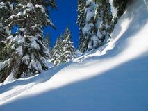 Neve da montanha fotografia de stock royalty free