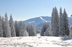 Neve da montanha Imagem de Stock Royalty Free