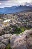 Neve da opinião superior de Kilimanjaro Fotos de Stock