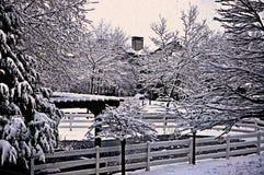 A neve de cristal em ramos de árvore na noite marca boas festas Fotografia de Stock Royalty Free