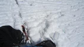 Neve de Dee em um dia do pó Imagens de Stock Royalty Free