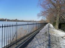 Neve de New York Fotografia de Stock