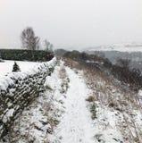 Neve de queda em um trajeto do montanhês com pedra todas e árvore distante imagem de stock