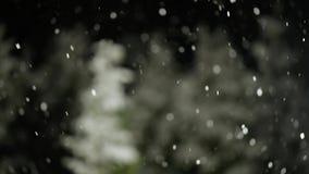 Neve de queda na noite video estoque