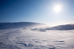 Neve de sopro fotografia de stock royalty free