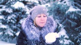 Neve de sopro de suas mãos no parque do inverno, tiro da menina do lento-movimento, paisagem do inverno video estoque