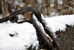 Neve degli abeti piovuta sopra la catena arrugginita Fotografia Stock Libera da Diritti