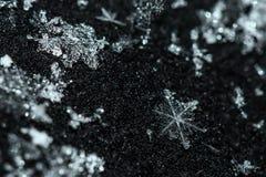Neve dei cristalli del modello del fiocco di neve Immagini Stock