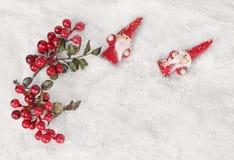 Neve del fondo di inverno, mirtilli rossi Fotografie Stock