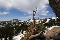 Neve del Lassen Fotografie Stock