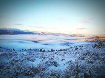 Neve del sole di inverno Fotografie Stock
