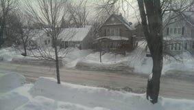 Neve della Buffalo Fotografia Stock