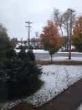 Neve della città universitaria fotografia stock libera da diritti