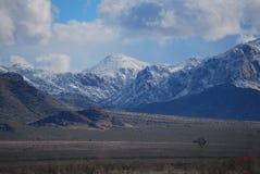 Neve della montagna del deserto Fotografia Stock Libera da Diritti
