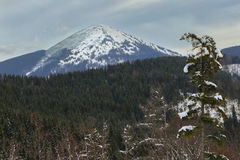 Neve della montagna paesaggio Montagna Inverno Immagine Stock Libera da Diritti