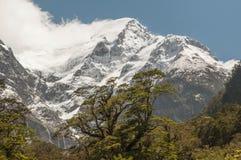 Neve delle alpi del sud, Nuova Zelanda Fotografia Stock Libera da Diritti