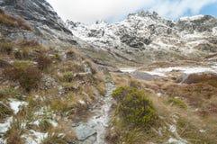 Neve delle alpi del sud, Nuova Zelanda Immagini Stock Libere da Diritti