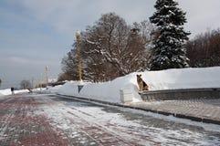 Neve di Chrismas Immagini Stock