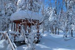 Neve di Cina del nord Fotografia Stock Libera da Diritti