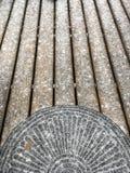 Neve di Florida fotografia stock