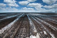 Neve di fusione sul campo Fotografie Stock Libere da Diritti