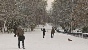 Neve di Hyde Park Fotografia Stock