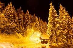 Neve di iluminazione pubblica Immagini Stock
