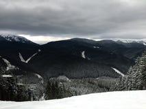 Neve di inverno Immagine Stock Libera da Diritti