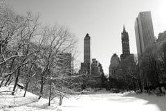 Neve di inverno in Central Park, Manhattan immagine stock