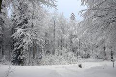 Neve di inverno in montagne Fotografie Stock Libere da Diritti