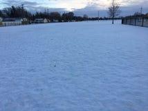 Neve di inverno nel campo Immagini Stock Libere da Diritti