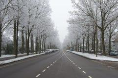 Neve di inverno sulla via Fotografia Stock Libera da Diritti
