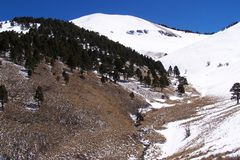 Neve di Pasqua nelle montagne vicino al ruidoso immagine stock
