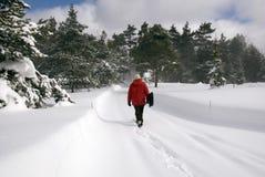 Neve di schiarimento Fotografia Stock