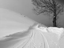 Neve do inverno com árvore Imagens de Stock Royalty Free
