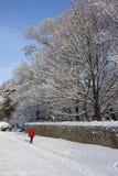 Neve do inverno em Inglaterra do norte Fotografia de Stock Royalty Free