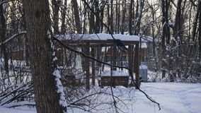 Neve do inverno no parque de Gorky foto de stock
